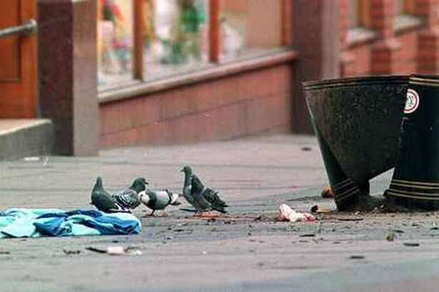 Aftermath – Birds scavenge in the wake of the IRA bombing